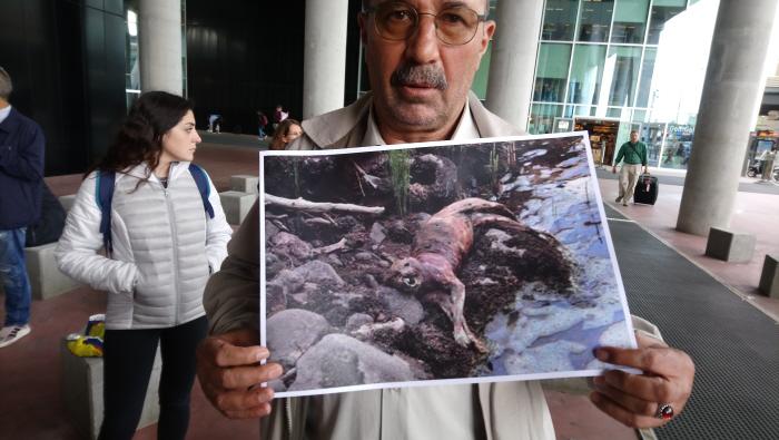 Actievoerder toont een verbrand dier
