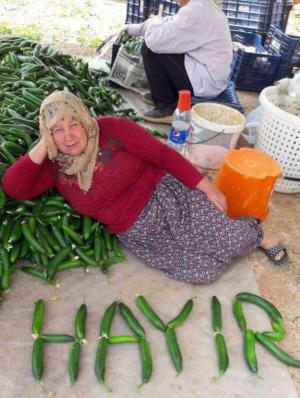 """""""Hayır"""" betekent """"nee""""."""