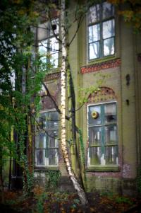 Hembrugterrein (foto: Alexander Meijer)