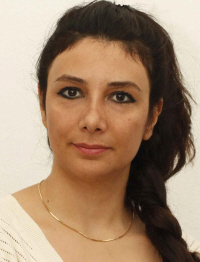 Lili Irani