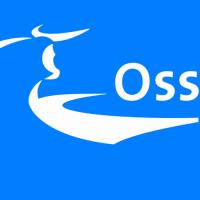 Gemeente Oss legt dwangtherapie op.