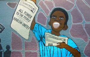 De Black Panther Party combineerde de strijd tegen racisme met de strijd voor socialisme.