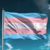 Trans vlag