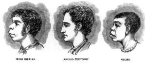 """'Wetenschappelijk' racisme: """"Irish Iberian, Anglo-Teutonic, Negro"""""""