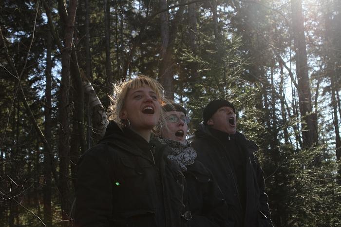 Bijna hemels koor in het bos