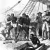 """""""De meeste slavenreizen verliepen niet wreed maar normaal"""""""